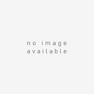 マスク ナース 通販